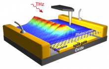 THz plasmons of extremely short wavelength propagate along the graphene sheet of a THz detector, as visualized with photocurrent images obtained by scanning probe microscopy.
